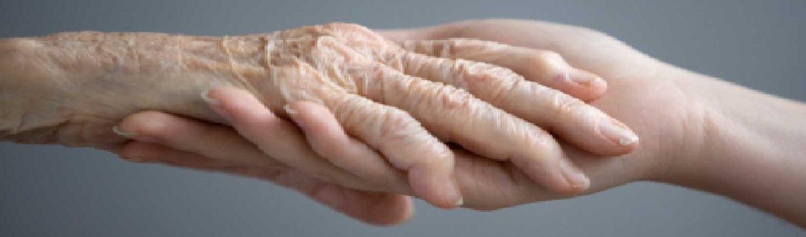 handenineen-bijgesneden